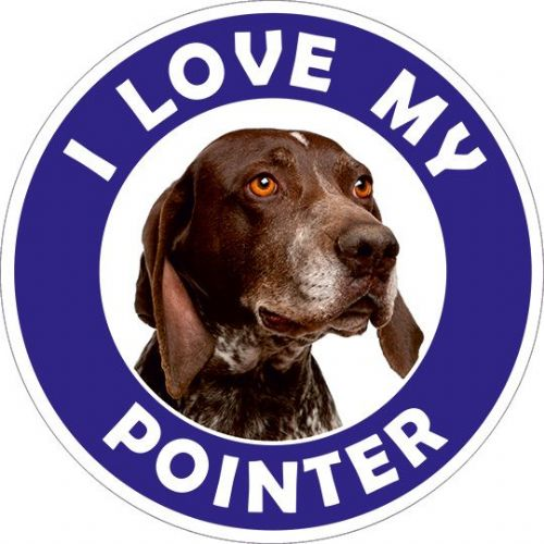 Pointer sticker